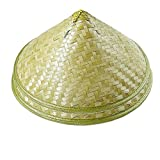 Sunny Hill Pack of 2 Traditional Chinese Adult Oriental Bamboo Straw Cone Garden Fishing Hat Adult Rice Hat