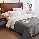 Weighted Throw Blanket for Adults & Kids (Light Grey 10lbs 52x78)   Duel Sided - Super Soft Fleece & Cozy Plush Sherpa Fabric on Opposite Side