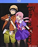 Future Diary: The Complete Series [Blu-ray]