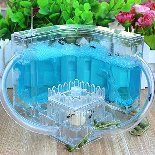 Ant Farm with Ants and Queen, Gel Pet Insect Feeding Castle Ant World Pasture Home Science and Education Toys Ant Farm for Kids with Ants 11x11x11cm A (excluding Ants)