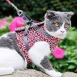 Enow Katzenwestengeschirr und Gehleine Brustgurt Katzenbekleidung Set Tierbedarf