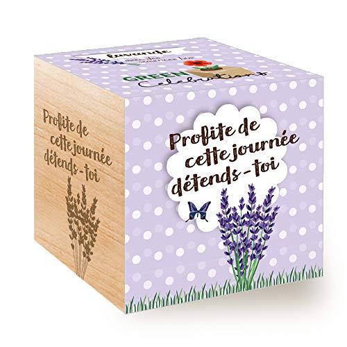 Feel Green Celebrations Ecocube, Lavande Certifiées Bio, Avec Un Message Gravé De Haute Qualité: Profite De Cette Journée Détends-Toi, Idée Cadeau (100% Ecologique), Grow-Your-Own/Kit Prêt-à-Pousser, Plantes dans des Cubes en Bois 7.5cm, Produit en Autriche