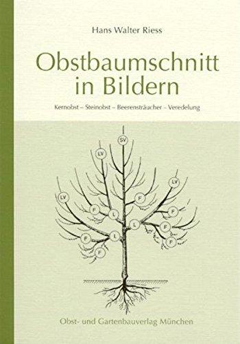 Obstbaumschnitt in Bildern von Hans W Riess (2013) Taschenbuch