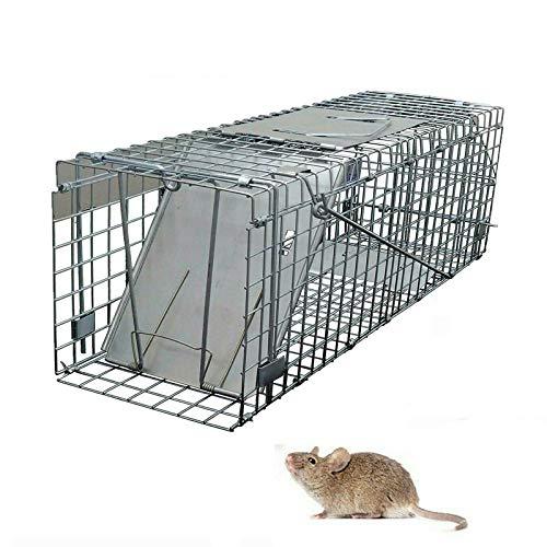 Autofather Tierfalle Lebendfalle Fang und Kaninchen Eichhörnchen Waschbär – 61 x 19 x 21 cm – Metallkonstruktion