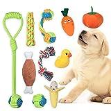 Angelland Giochi per Cani, da Bottiglia Frutta e Verdura con Combinazione di Accessori per...