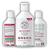 Flea Shampoo For Dogs 500ml - Sensitive Itchy Skin Dog and Puppy Grooming - Medicated Fleas Treatment
