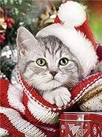 ダイヤモンドPaintinダイヤモンド刺繡キット5Ddiyダイヤモンド絵画動物猫フルドリルダイヤモンド刺繡犬冬の装飾家の写真クリスマスギフト-White_30X40CM