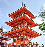 Puzzle Jigsaw 1000 Piezas Templo Senso Ji Japón Hito Kyoto Adulto Ocio Entretenimiento Niños Juguetes Educativos Adult Child Jigsaw Puzzle Gift