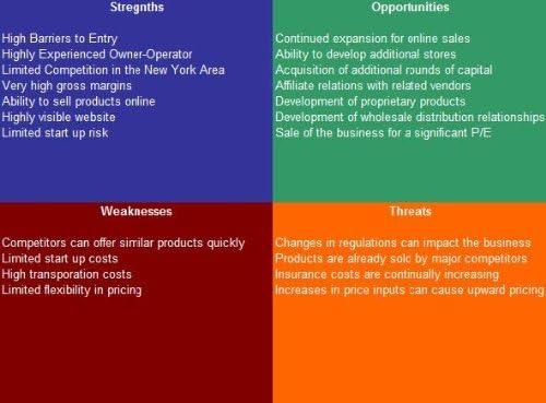 Credit Repair Service SWOT Analysis Plus Business Plan product image