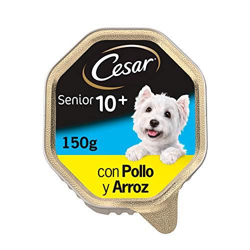 Cesar Comida Húmeda para Perros Senior en paté con Pollo y Arroz (Pack de 14 Tarrinas x 150g)