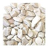 Ciottoli di marmo bianco di Carrara - diametro 25/40 mm - Sacco da 8 kg