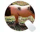 Yanteng Alfombrilla de ratón Redonda de Cerdo Animal Lindo, Alfombrilla de ratón Redonda de Animales