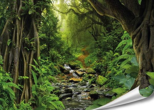 PMP 4life. XXL Poster Tropischer Dschungel | 140x100cm | hochauflösendes Wand-Bild, Natur Poster extra groß, XL Fotoposter | Wand-deko Bild Jungel Wald Bäume Regenwald