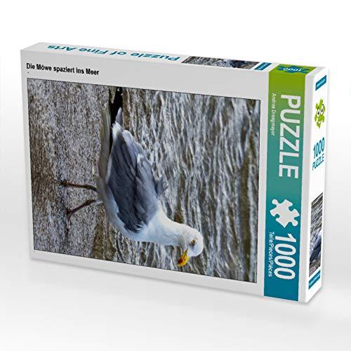 CALVENDO Puzzle Die Möwe spaziert ins Meer 1000 Teile Lege-Größe 48 x 64 cm Foto-Puzzle Bild von Andrea Dreegmeyer