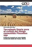 Tecnología limpia para el cultivo del hongo comestible Pleurotus spp: Cultivo de traspatio en comunidades rurales del estado de Puebla, México