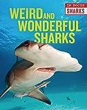 Weird and Wonderful Sharks (In Focus: Sharks)