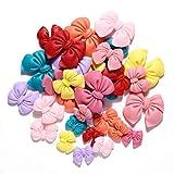 Juland 31 unidades de nudos de mariposa de resina en miniatura, decoración de jardín kit de adornos ...