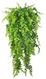 Artificial Plants Vines Ferns...