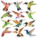 Anti-Collision Window Clings Bird Alert Collision Decals to Prevent Bird Strikes on Window Glass - Set of 12 Hummingbirds