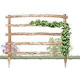 Natürliche Rankhilfe aus Holz in 33 verschiedenen Größen für Ihre Kletterpflanzen Höhe 150 x Breite 120 cm