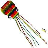 Gran cometa pulpo arco iris para niños y adultos - 4 metros de cola y 80m de línea de vuelo - Muy fácil de volar - Excelente juguete para exteriores