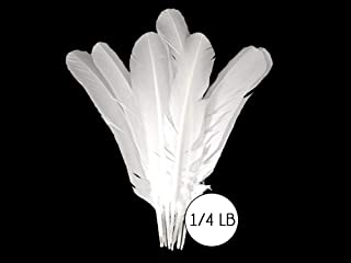 Best white turkey feathers wholesale Reviews