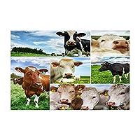 Assanu 農家動物牛風呂敷物伝統的なアメリカ西部の町様々な牛シャワーマット15.7×23.6in玄関マット用家の装飾浴室床敷物