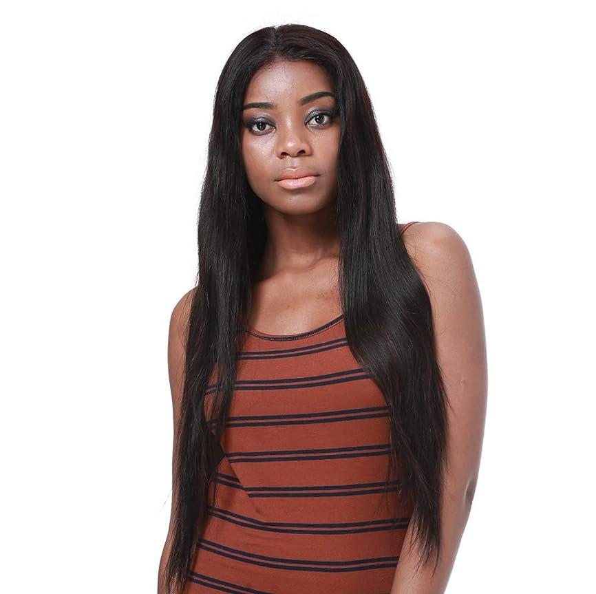 ミッションパンツ溶かす合成耐熱天然高品質かつらのためのフロントレースかつら女性の長いストレートの髪