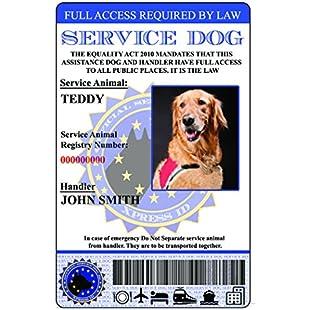 Service Dog ID Card European Union Version (Custom w/Holographic lamination):Netac2