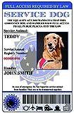 Servicio perro tarjeta de identificación Unión Europea versión (Custom W/Holograma de laminación)