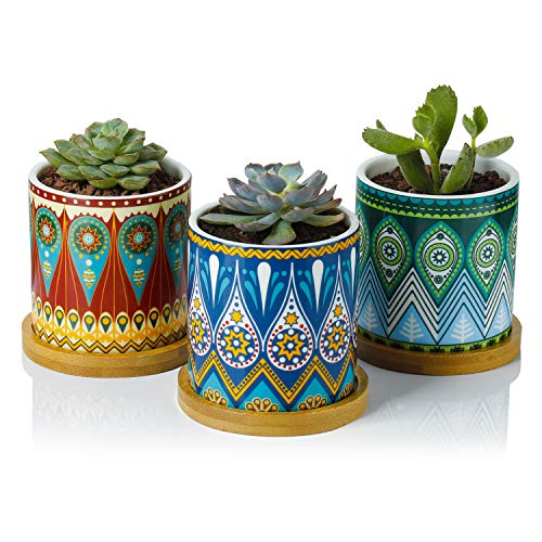 Succulent Plant Pots - 3 Inch Small Ceramic Cylindrical Planter Containers for Flowers or Cactus with Drainage Hole and Bamboo Tray - Mandala Patterns Set of 3