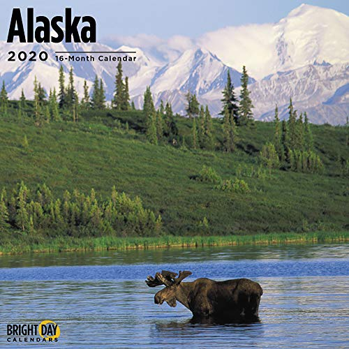 2020 Alaska Kalender 16 Monate 12 x 12 Wandkalender von Bright Day Calendars (USA Home Towns Collection Wandkalender) 12 inch x 24 inch Alaska 2020