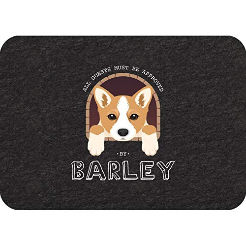 """Personalized Indoor Dog Mat   Soaks Up Water, Traps Dirt & Mud   Low-Profile Mats for Entry Garage, High Traffic Areas   Tacky Backing Stays in Place   Must Be Approved   17"""" x 24"""" Black"""