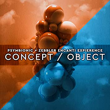 Concept / Object