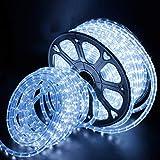 Kefflum Tuyau de lumière LED, tuyau à LED, barre lumineuse à chaîne légère 36LEDs / M tuyau pour intérieur et extérieur IP65 20M blanc froid