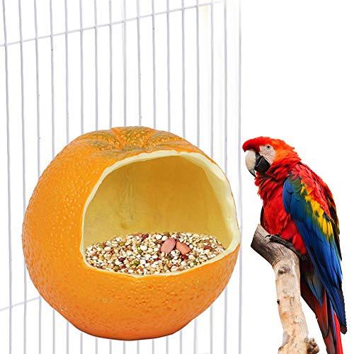 Letway Mangiatoia per Uccelli, Alimentatore Fisso Appeso Scatola per Alimenti per Uccelli Simile a Frutta per Budgerigar Canarino Cockatiel Finch Parakeet Use Cozy
