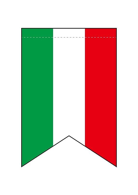 ペイント痴漢前兆N変形タペストリー 69411 イタリア国旗柄