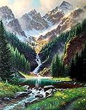 Peinture Par Numero Adulte Paysage - Home Decor - Montagne De Neige,Forêt 40X50Cm - Sans Cadre