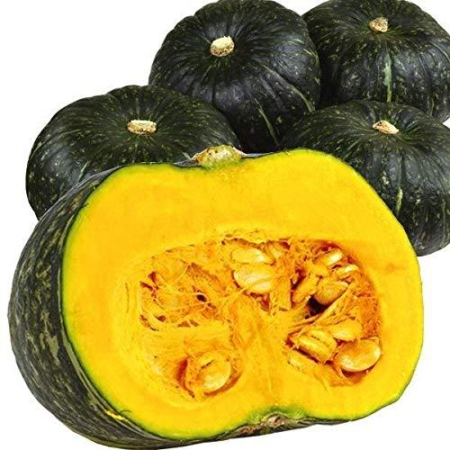 国華園 北海道産 他かぼちゃ 10kg 1箱