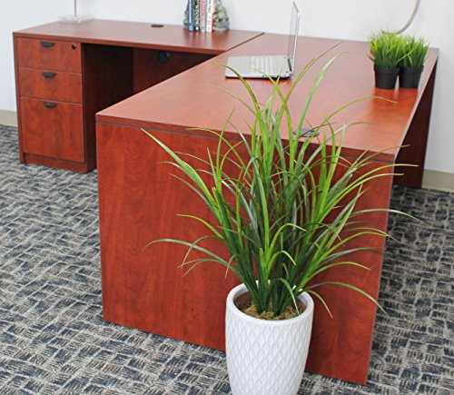 Holland Executive Desk With File Storage Pedestal