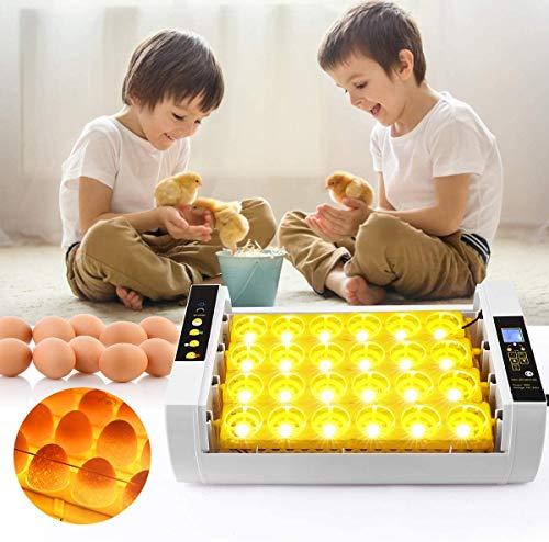 Kacsoo Incubateur automatique à œufs LED haute efficacité Nacreuse à 24 œufs Incubate domestique avec contrôle automatique de température pour œufs de poule, canard, oie