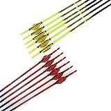 """ACCMOS 32 """"Flecha de Carbono Puro, Spine 1000 ID 4,2 mm Tiro con Arco Flechas Pluma Espiral, para Juventud Aldult Arco Compuesto Arcos Recurvos Caza y Práctica de Tiro (12pcs Spine 1000 2 Colors)"""