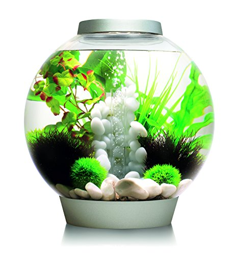 OASE biOrb CLASSIC 30 LED Kugel-Aquarium, 30 Liter - Aquarien Komplett-Set mit LED Beleuchtung und patentiertem Filter-System, Acryl-Becken in Silber
