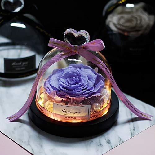 Rosas reales de San Valentín de 2021 Eterno Exclusiva Rosa en cúpula de cristal La Bella y Bestia Rosa Regalos Románticos