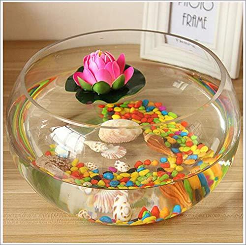TANERDD Transparentes Aquarium Vase rund Turtle Tank Wassertank Hydroponischer Blumentopf für Schlafzimmer, Wohnzimmer, Büro, Küche