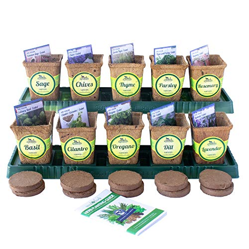 Windowsill Herb Garden Kit, Herb Planter Comes Complete with a 10 Variety Non GMO Heirloom Herb Seed...