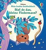 Mein buntes Gucklochbuch: Bist du das, kleine Fledermaus?: ab 6 Monaten