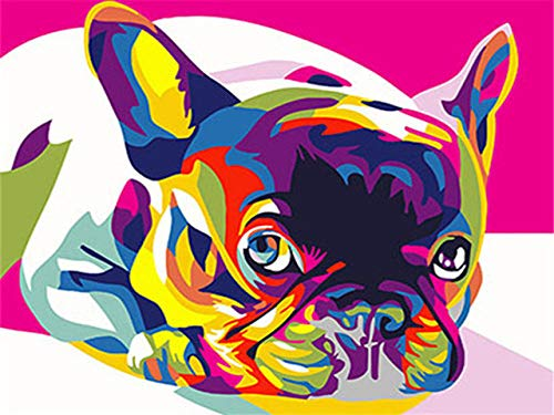 Paint by Numbers Kits for Adults and Kids DIY Oil Painting Digital Colorful French Bulldog - Canvas Wall Art Home Decoration 40X50Cm/15.80X 19.70 Inch (Without Framed)