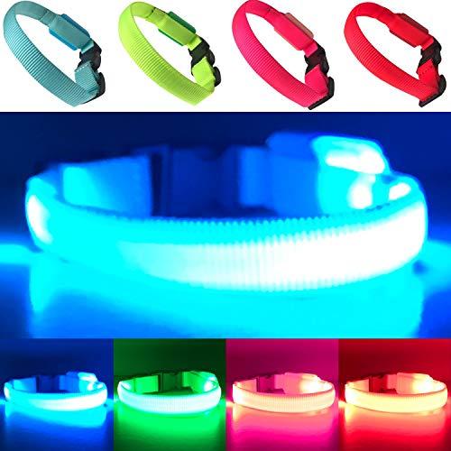 EXPERSOL - Collar para Perro con luz LED, Funciona con Pilas superbrillantes, Mayor Visibilidad y Seguridad, 4 Colores, 3 tamaños (Azul pequeño)
