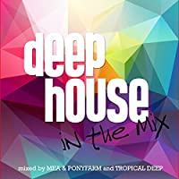 Deep House In The Mix